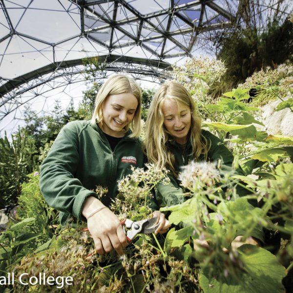 Cornwall College - The Eden Project University Courses Open Day
