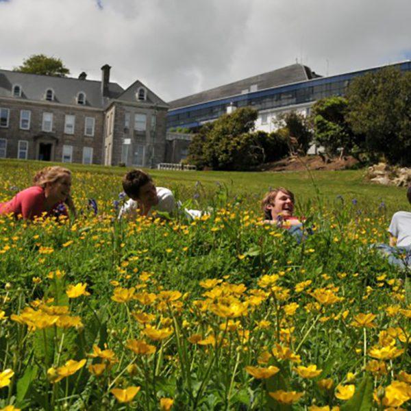 University Experience 2019 Penryn