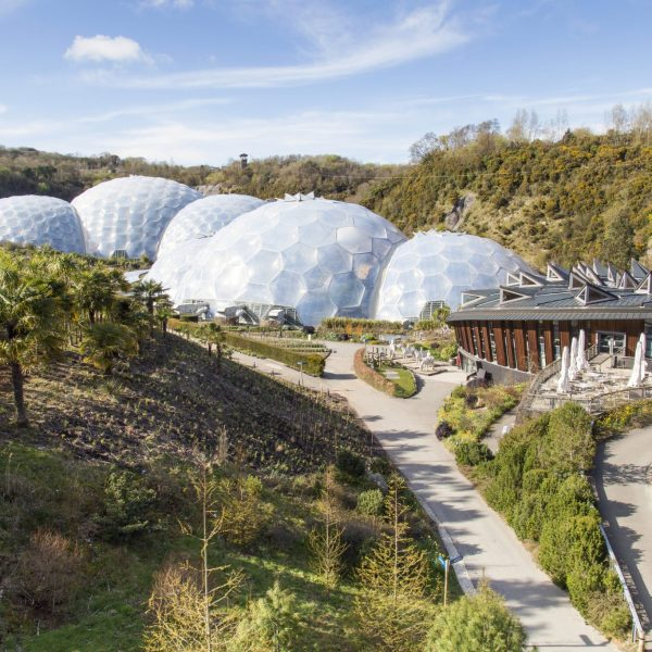 DISCOVER HORTICULTURE AT EDEN