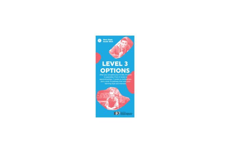 Level 3 Options